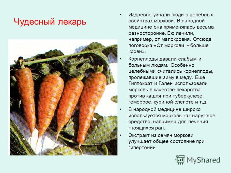 Чудесный лекарь Издревле узнали люди о целебных свойствах моркови. В народной медицине она применялась весьма разносторонне. Ею лечили, например, от малокровия. Отсюда поговорка «От моркови - больше крови». Корнеплоды давали слабым и больным людям. О