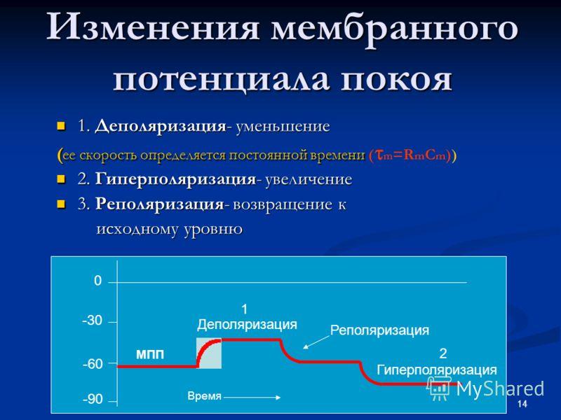 14 Изменения мембранного потенциала покоя 1. Деполяризация- уменьшение 1. Деполяризация- уменьшение ( ее скорость определяется постоянной времени ( ее скорость определяется постоянной времени ( m =R m C m )) 2. Гиперполяризация- увеличение 2. Гиперпо