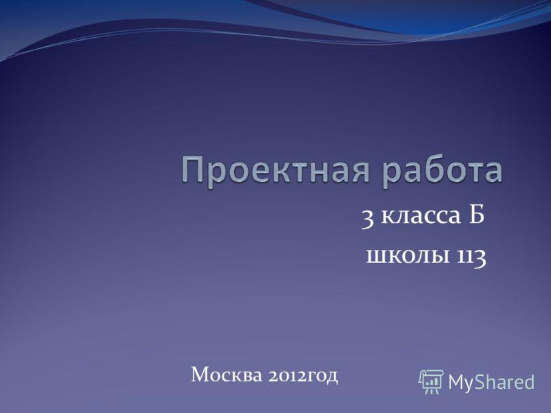 3 класса Б школы 113 Москва 2012год