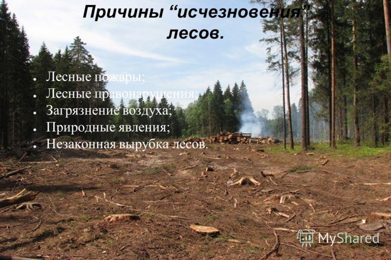 Значение лесов. Дом для живых организмов; Источник кислорода; Источник питания; Место отдыха для человека; Источник древесины; «Зеленая аптека».