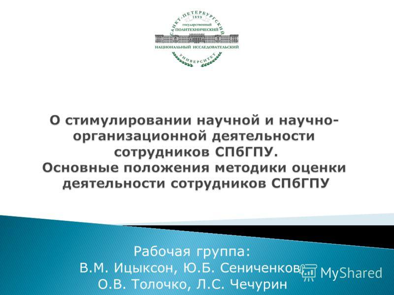 Рабочая группа: В.М. Ицыксон, Ю.Б. Сениченков, О.В. Толочко, Л.С. Чечурин