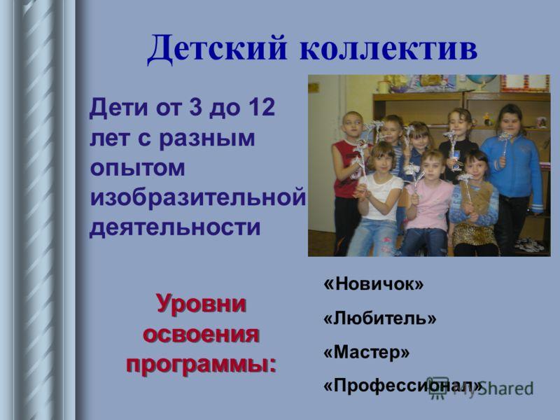 Детский коллектив Дети от 3 до 12 лет с разным опытом изобразительной деятельности Уровни освоения программы: Уровни освоения программы: « Новичок» «Любитель» «Мастер» «Профессионал»