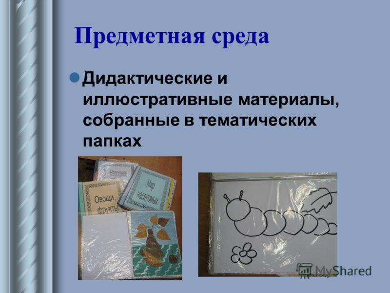 Предметная среда Дидактические и иллюстративные материалы, собранные в тематических папках