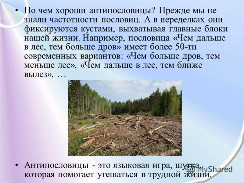 Но чем хороши антипословицы? Прежде мы не знали частотности пословиц. А в переделках они фиксируются кустами, выхватывая главные блоки нашей жизни. Например, пословица «Чем дальше в лес, тем больше дров» имеет более 50-ти современных вариантов: «Чем