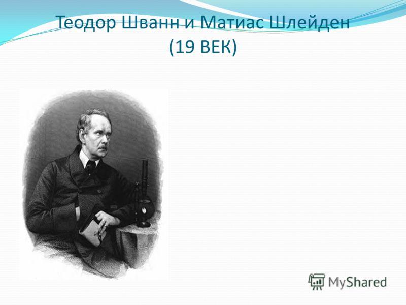 Теодор Шванн и Матиас Шлейден (19 ВЕК)