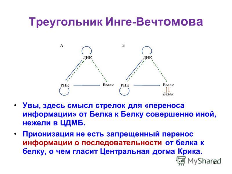 Треугольник Инге-Вечт омова Увы, здесь смысл стрелок для «переноса информации» от Белка к Белку совершенно иной, нежели в ЦДМБ. Прионизация не есть запрещенный перенос информации о последовательности от белка к белку, о чем гласит Центральная догма К