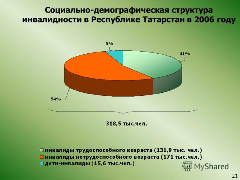 Социально-демографическая структура инвалидности в Республике Татарстан в 2006 году 21