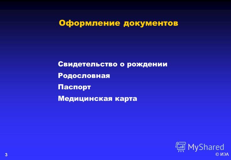 © ИЭА3 Свидетельство о рождении Родословная Паспорт Медицинская карта Оформление документов