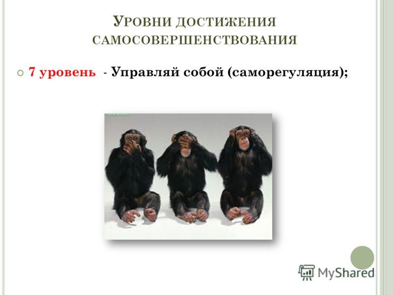 У РОВНИ ДОСТИЖЕНИЯ САМОСОВЕРШЕНСТВОВАНИЯ 7 уровень - Управляй собой (саморегуляция);