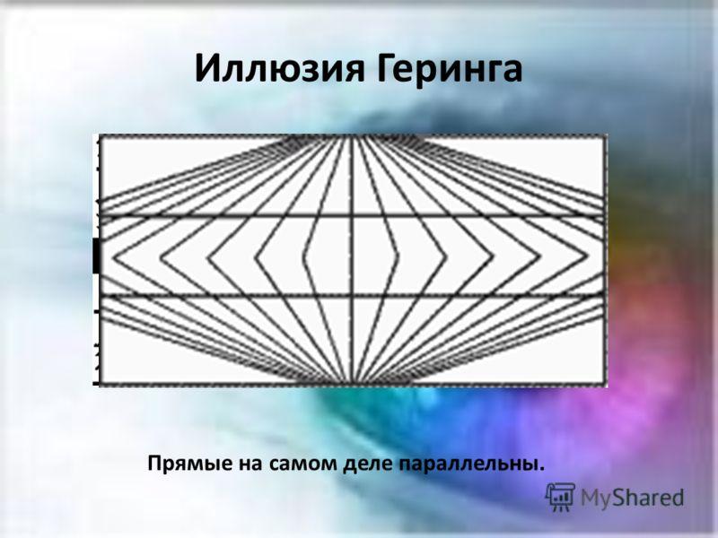 Иллюзия Геринга Прямые на самом деле параллельны.