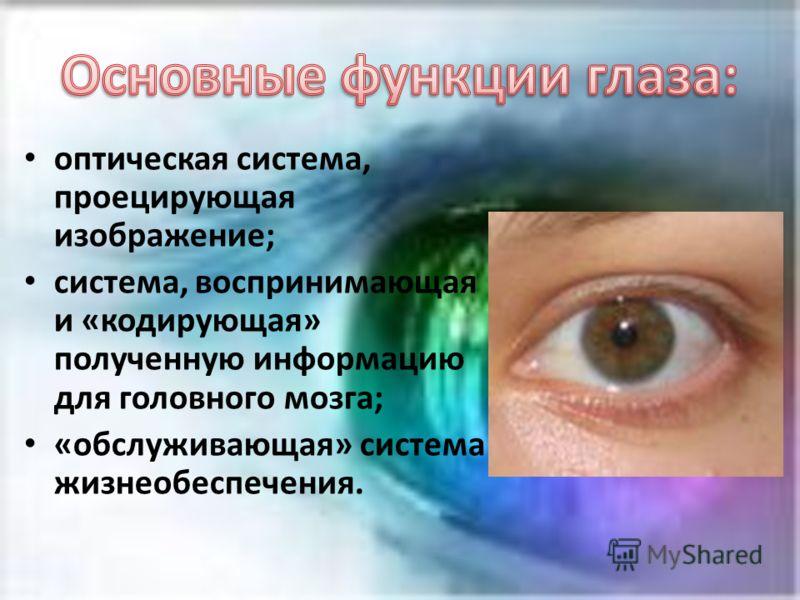 оптическая система, проецирующая изображение; система, воспринимающая и «кодирующая» полученную информацию для головного мозга; «обслуживающая» система жизнеобеспечения.