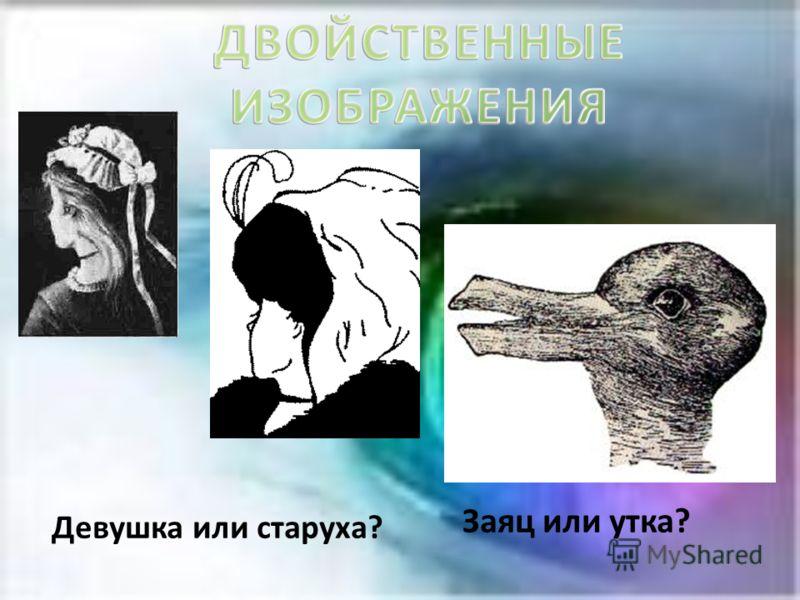 Заяц или утка? Девушка или старуха?