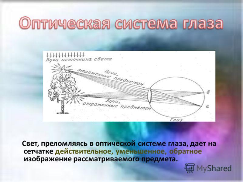 Свет, преломляясь в оптической системе глаза, дает на сетчатке действительное, уменьшенное, обратное изображение рассматриваемого предмета.