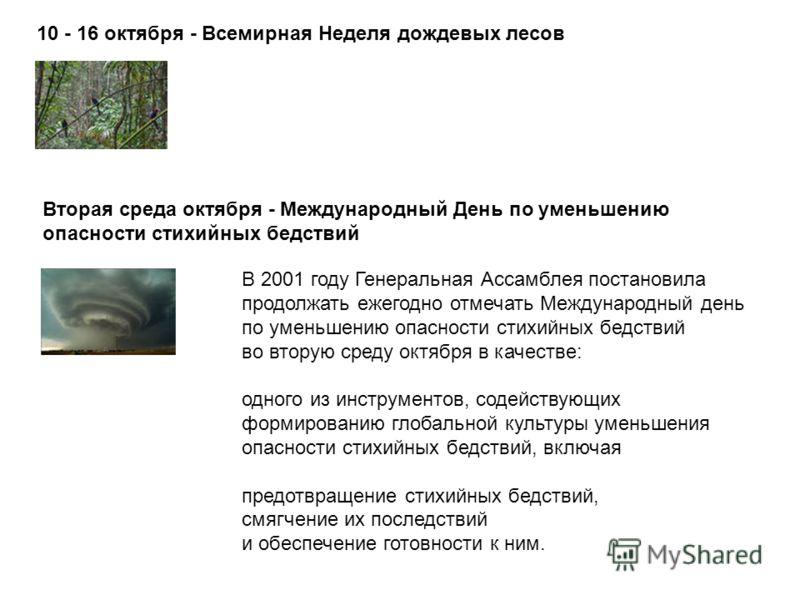 10 - 16 октября - Всемирная Неделя дождевых лесов Вторая среда октября - Международный День по уменьшению опасности стихийных бедствий В 2001 году Генеральная Ассамблея постановила продолжать ежегодно отмечать Международный день по уменьшению опаснос