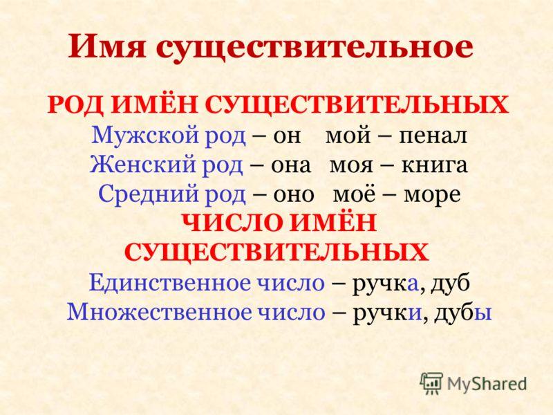 Имя существительное РОД ИМЁН СУЩЕСТВИТЕЛЬНЫХ Мужской род – он мой – пенал Женский род – она моя – книга Средний род – оно моё – море ЧИСЛО ИМЁН СУЩЕСТВИТЕЛЬНЫХ Единственное число – ручка, дуб Множественное число – ручки, дубы