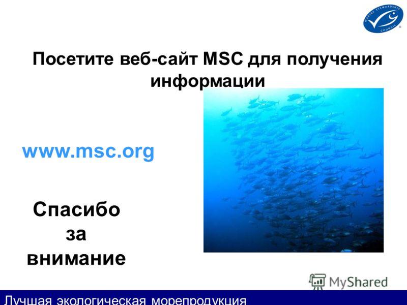 Посетите веб-сайт MSC для получения информации Спасибо за внимание www.msc.org Лучшая экологическая морепродукция