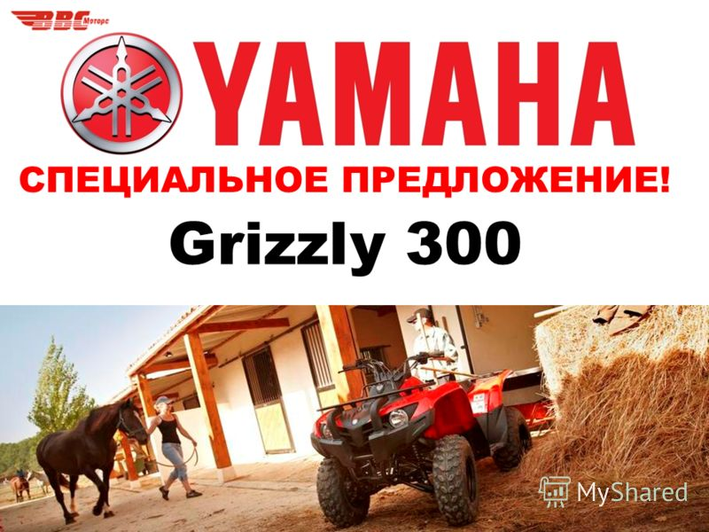 СПЕЦИАЛЬНОЕ ПРЕДЛОЖЕНИЕ! Grizzly 300