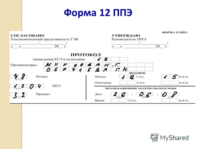 Форма 12 ППЭ