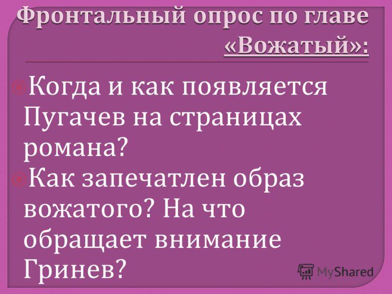 Когда и как появляется Пугачев на страницах романа ? Как запечатлен образ вожатого ? На что обращает внимание Гринев ?