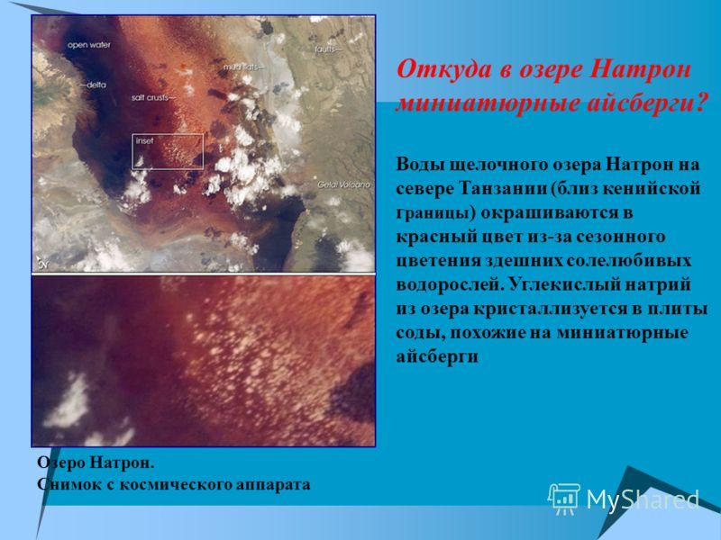 Озеро Натрон. Снимок с космического аппарата Откуда в озере Натрон миниатюрные айсберги? Воды щелочного озера Натрон на севере Танзании (близ кенийской г раницы ) окрашиваются в красный цвет из-за сезонного цветения здешних солелюбивых водорослей. Уг