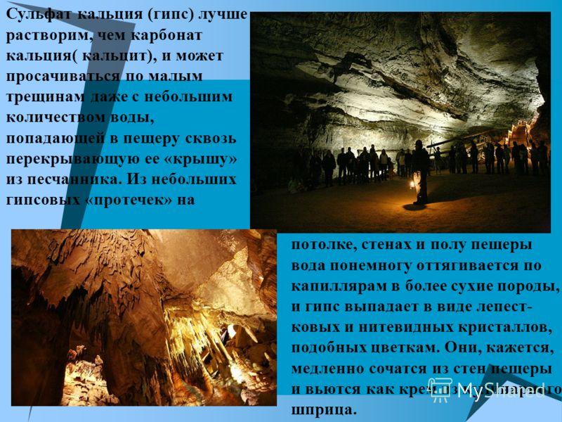 Сульфат кальция (гипс) лучше растворим, чем карбонат кальция( кальцит), и может просачиваться по малым трещинам даже с небольшим количеством воды, попадающей в пещеру сквозь перекрывающую ее «крышу» из песчанника. Из небольших гипсовых «протечек» на