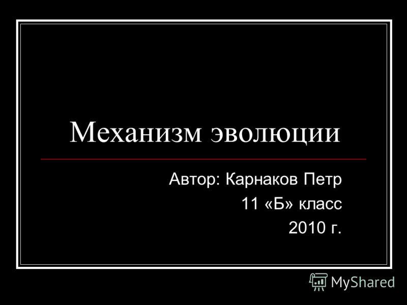 Механизм эволюции Автор: Карнаков Петр 11 «Б» класс 2010 г.