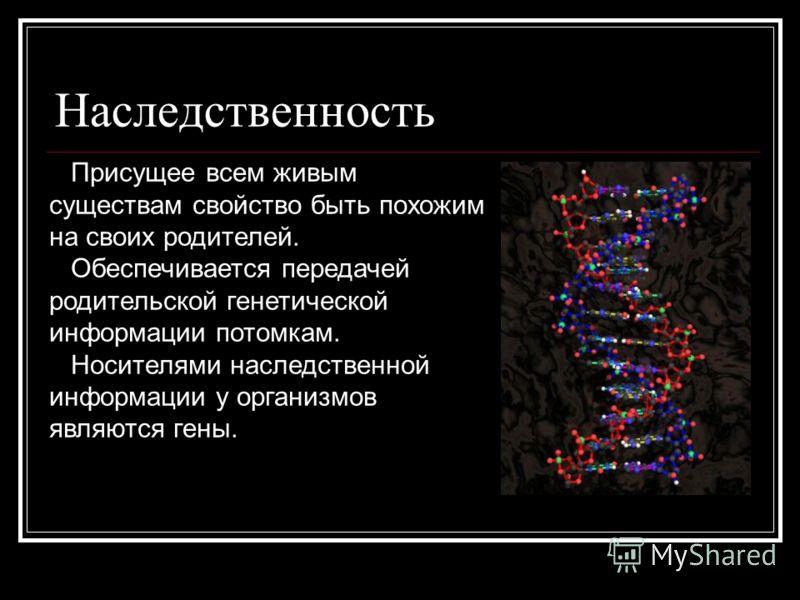 Наследственность Присущее всем живым существам свойство быть похожим на своих родителей. Обеспечивается передачей родительской генетической информации потомкам. Носителями наследственной информации у организмов являются гены.
