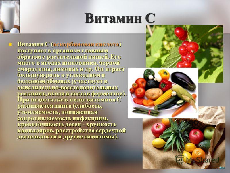 Витамин С Витамин С (аскорбиновая кислота) поступает в организм главным образом с растительной пищей. Его много в ягодах шиповника, черной смородины, лимонах и др. Он играет большую роль в углеводном и белковом обменах (участвует в окислительно-восст