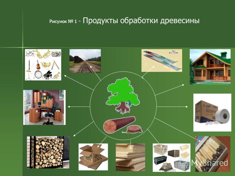 Рисунок 1 - Продукты обработки древесины