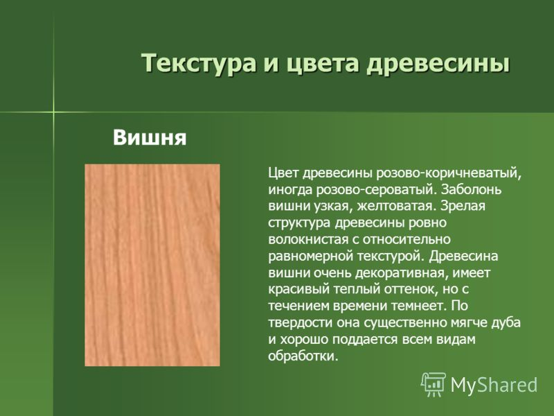 Текстура и цвета древесины Цвет древесины розово-коричневатый, иногда розово-сероватый. Заболонь вишни узкая, желтоватая. Зрелая структура древесины ровно волокнистая с относительно равномерной текстурой. Древесина вишни очень декоративная, имеет кра