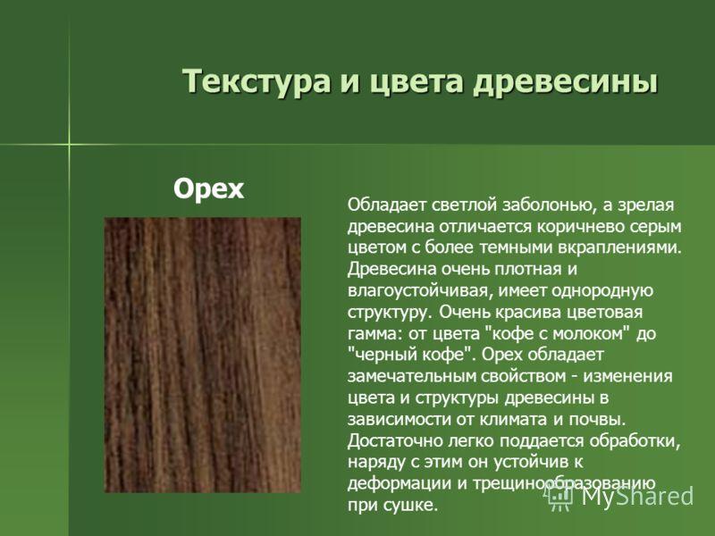 Текстура и цвета древесины Обладает светлой заболонью, а зрелая древесина отличается коричнево серым цветом с более темными вкраплениями. Древесина очень плотная и влагоустойчивая, имеет однородную структуру. Очень красива цветовая гамма: от цвета