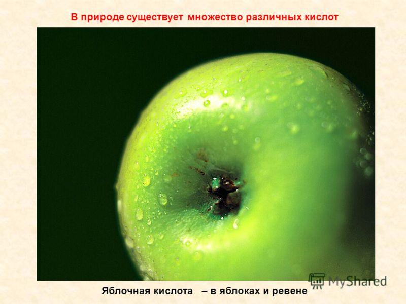 Яблочная кислота – в яблоках и ревене В природе существует множество различных кислот