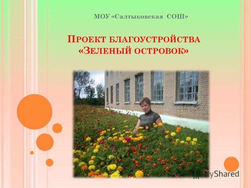 П РОЕКТ БЛАГОУСТРОЙСТВА «З ЕЛЕНЫЙ ОСТРОВОК » МОУ «Cалтыковская CОШ»