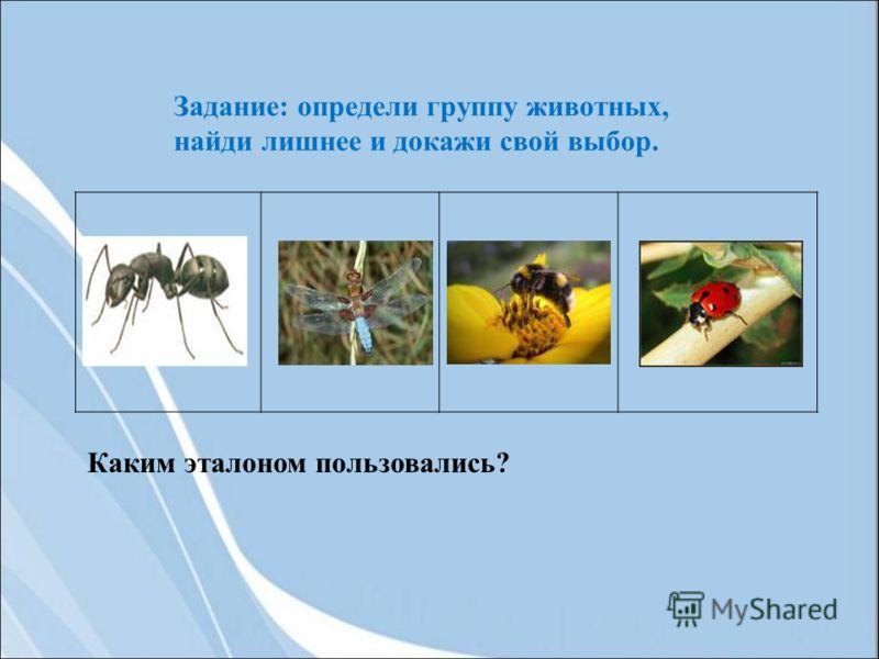Задание: определи группу животных, найди лишнее и докажи свой выбор. Каким эталоном пользовались?