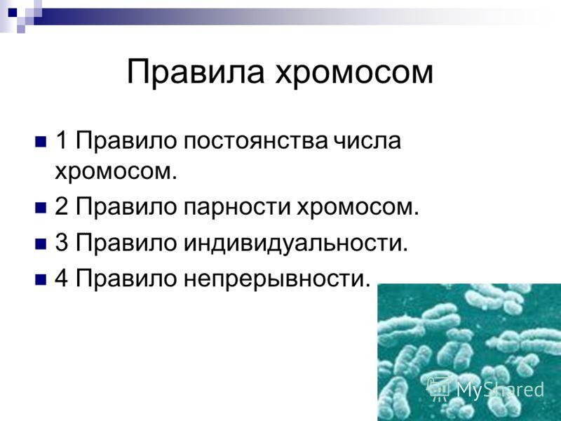 Правила хромосом 1 Правило постоянства числа хромосом. 2 Правило парности хромосом. 3 Правило индивидуальности. 4 Правило непрерывности.
