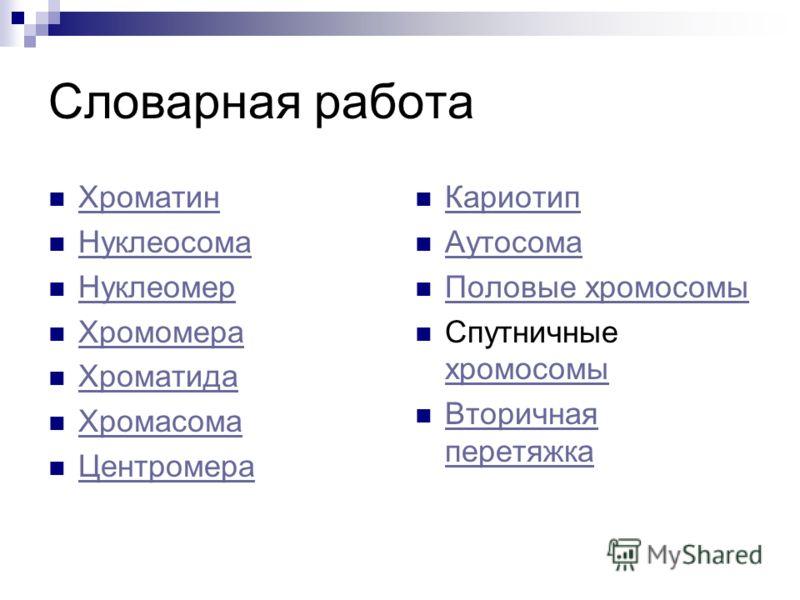 Презентация Структура И Функции Хромосом