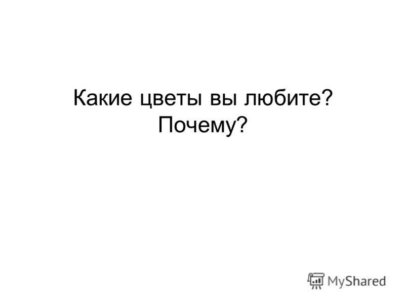 Какие цветы вы любите? Почему?