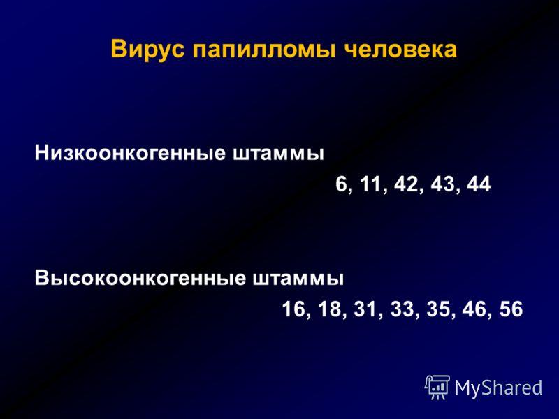 Вирус папилломы человека Низкоонкогенные штаммы 6, 11, 42, 43, 44 Высокоонкогенные штаммы 16, 18, 31, 33, 35, 46, 56