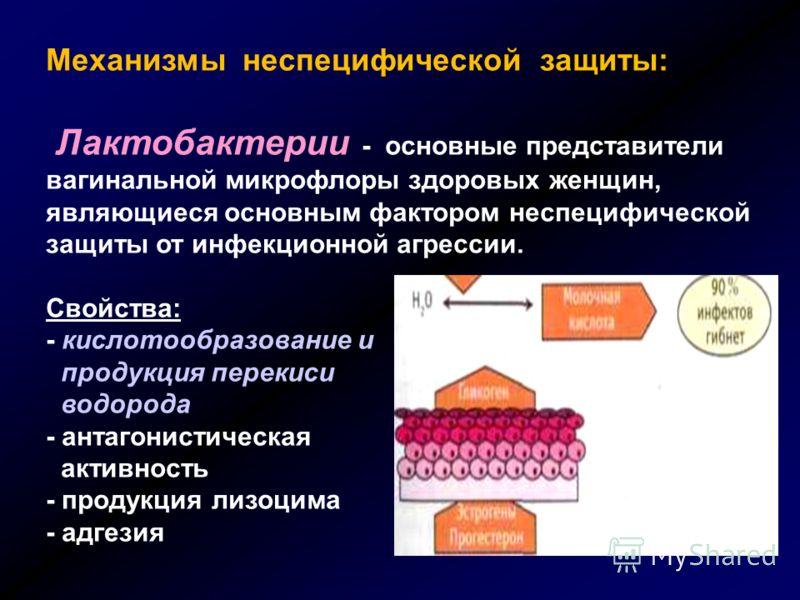 Механизмы неспецифической защиты: Лактобактерии - основные представители вагинальной микрофлоры здоровых женщин, являющиеся основным фактором неспецифической защиты от инфекционной агрессии. Свойства: - кислотообразование и продукция перекиси водород