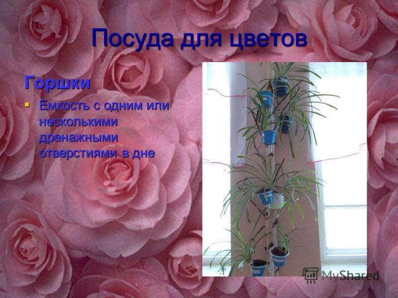 Посуда для цветов Горшки Емкость с одним или несколькими дренажными отверстиями в дне Емкость с одним или несколькими дренажными отверстиями в дне