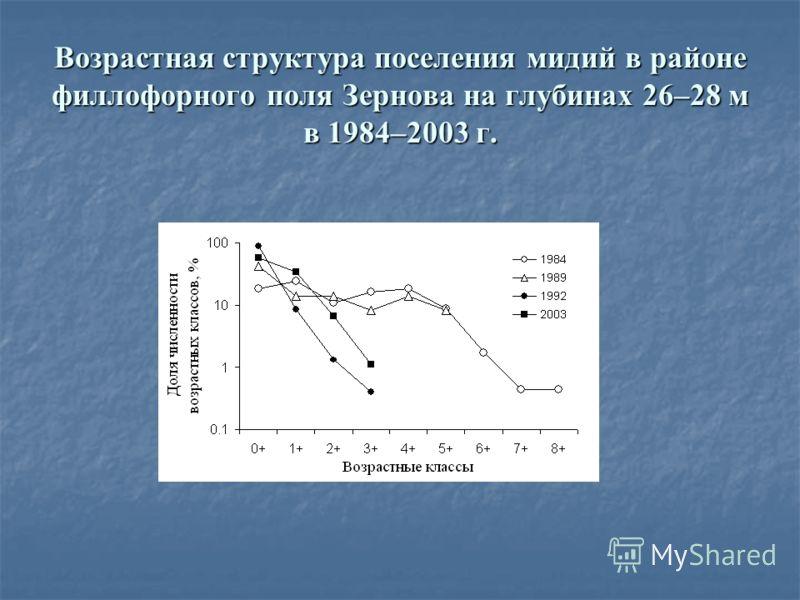 Возрастная структура поселения мидий в районе филлофорного поля Зернова на глубинах 26–28 м в 1984–2003 г.