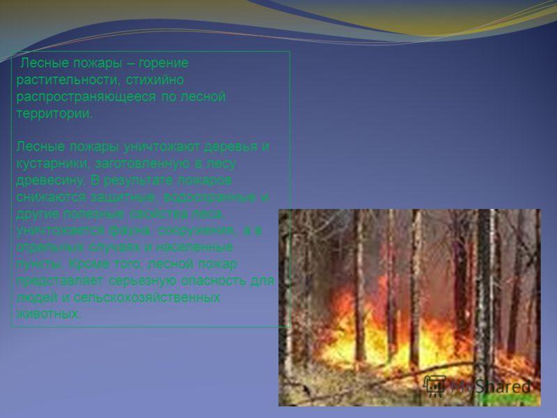 Лесные пожары – горение растительности, стихийно распространяющееся по лесной территории. Лесные пожары уничтожают деревья и кустарники, заготовленную в лесу древесину. В результате пожаров снижаются защитные, водоохранные и другие полезные свойства