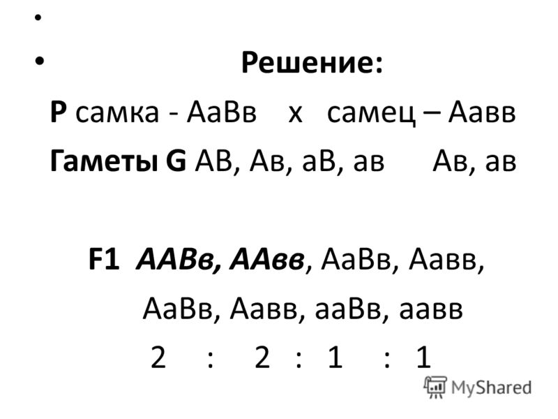 Решение: Р самка - АаВв х самец – Аавв Гаметы G АВ, Ав, аВ, ав Ав, ав F1 ААВв, ААвв, АаВв, Аавв, АаВв, Аавв, ааВв, аавв 2 : 2 : 1 : 1