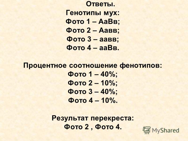 Ответы. Генотипы мух: Фото 1 – АаВв; Фото 2 – Аавв; Фото 3 – аавв; Фото 4 – ааВв. Процентное соотношение фенотипов: Фото 1 – 40%; Фото 2 – 10%; Фото 3 – 40%; Фото 4 – 10%. Результат перекреста: Фото 2, Фото 4.