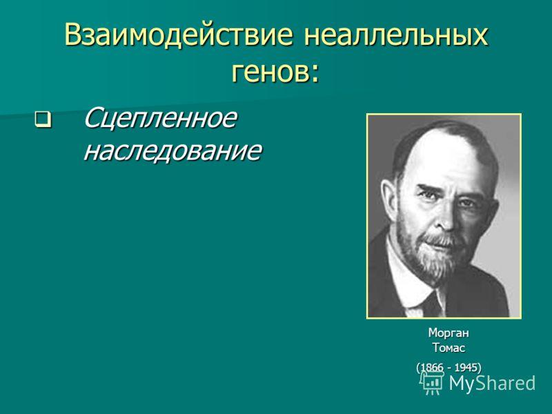 Взаимодействие неаллельных генов: Сцепленное наследование Морган Томас (1866 - 1945)
