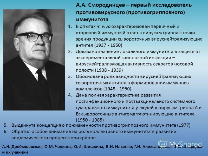 А.А. Смородинцев – первый исследователь противовирусного (противогриппозного) иммунитета 1.В опытах in vivo охарактеризован первичный и вторичный иммунный ответ к вирусам гриппа с точки зрения продукции сывороточных вируснейтрализующих антител (1937