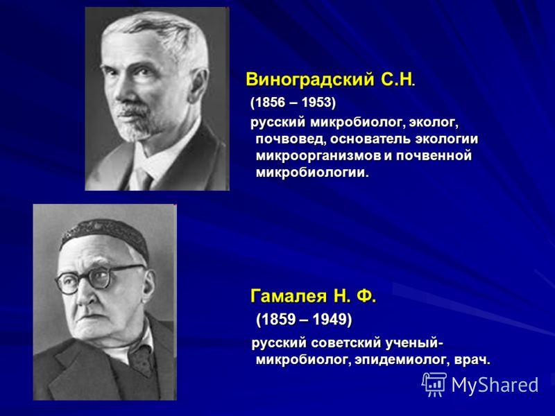 Виноградский С.Н. Виноградский С.Н. (1856 – 1953) (1856 – 1953) русский микробиолог, эколог, почвовед, основатель экологии микроорганизмов и почвенной микробиологии. русский микробиолог, эколог, почвовед, основатель экологии микроорганизмов и почвенн