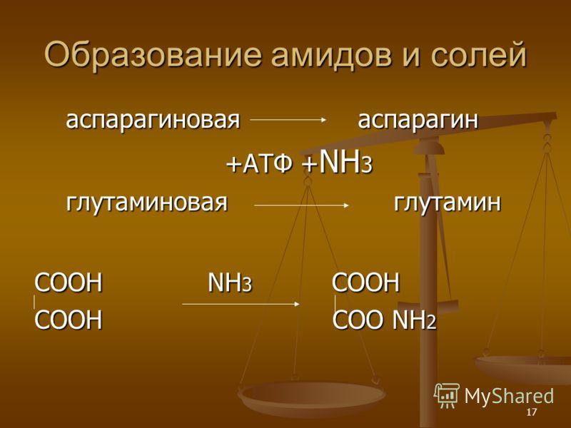 17 Образование амидов и солей аспарагиновая аспарагин аспарагиновая аспарагин +АТФ + NН 3 +АТФ + NН 3 глутаминовая глутамин глутаминовая глутамин СООН NН 3 СООН СООН СОО NН 2