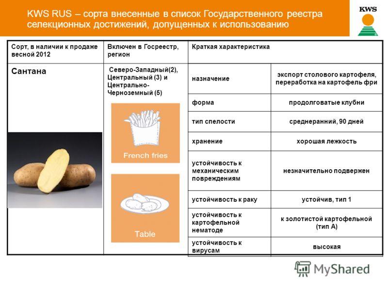 KWS RUS – сорта внесенные в список Государственного реестра селекционных достижений, допущенных к использованию Сорт, в наличии к продаже весной 2012 Включен в Госреестр, регион Краткая характеристика Сантана Северо-Западный(2), Центральный (3) и Цен
