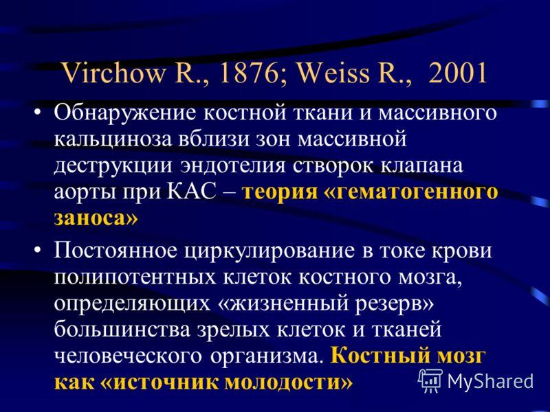 Virchow R., 1876; Weiss R., 2001 Обнаружение костной ткани и массивного кальциноза вблизи зон массивной деструкции эндотелия створок клапана аорты при КАС – теория «гематогенного заноса» Постоянное циркулирование в токе крови полипотентных клеток кос